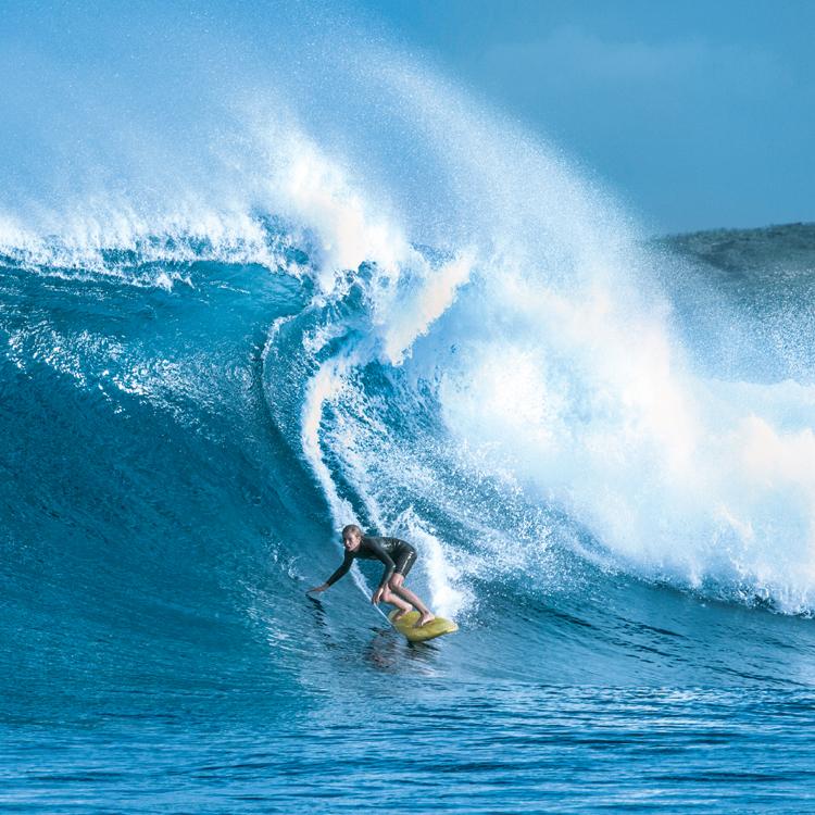 【劇場鑑賞券&原作本】伝説のサーフ文学を映画化『ブレス あの波の向こうへ』