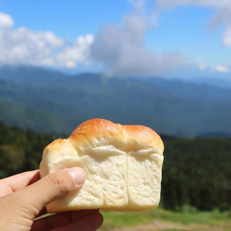 まとめて食べたい!「このパンがすごい!」記事一覧