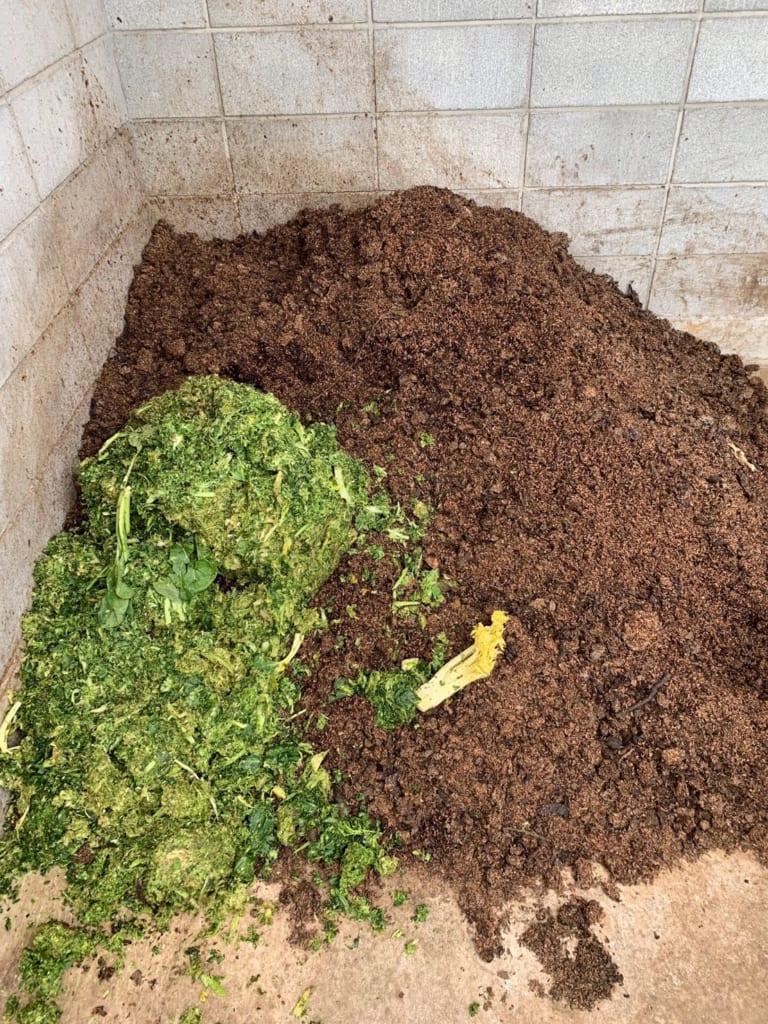 野村友里さん「土から生まれて土に還る農作物、そして私たち。eatrip soil」