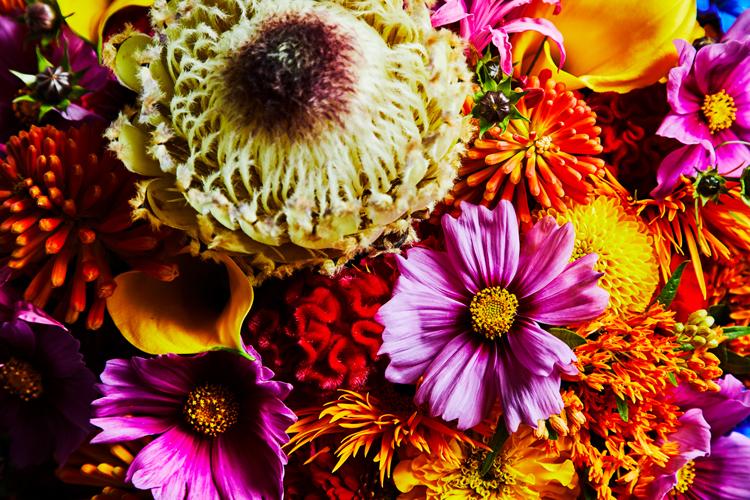 「これからは羽を伸ばして」 1人で育ててくれた母へ感謝の花束を