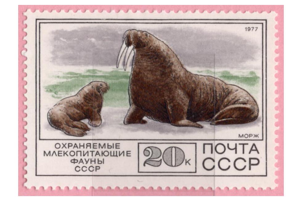 切手の博物館で開催中「シロクマ、ペンギンもいる!氷の世界」展