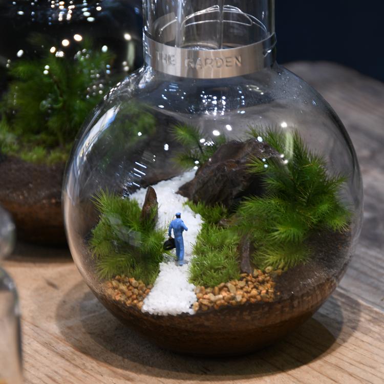 ビンの中の小さな世界。作っても見ても楽しい、苔テラリウム