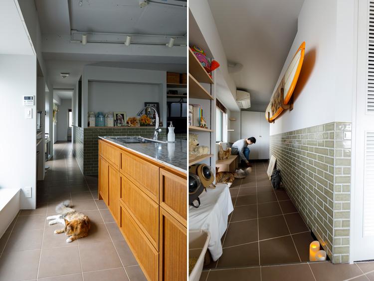 ごく普通のマンションが猫も喜ぶ「光と風がまわる」空間に