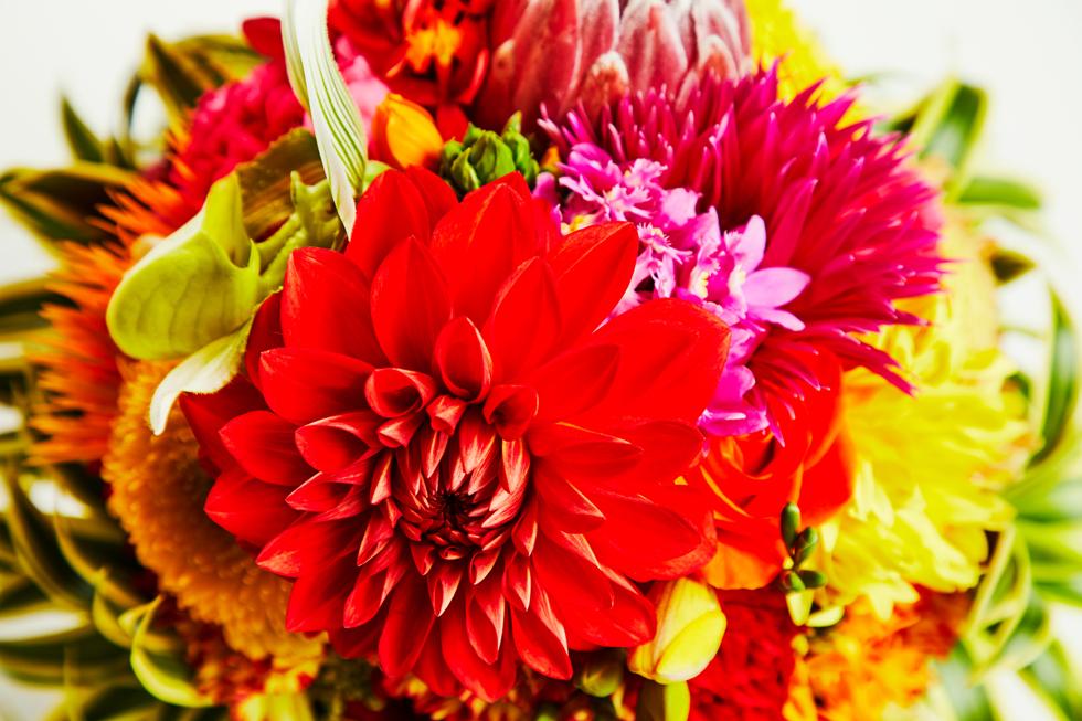 〈#ステイホーム with 花のない花屋〉#08  精いっぱいのロマンチックを(三並さん)