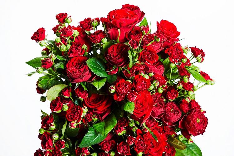 花のない花屋