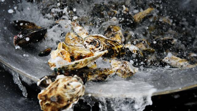 水揚げ後、水洗いされる牡蠣。回転するドラムの中で、跳びはねているように見えた=兵庫県相生市
