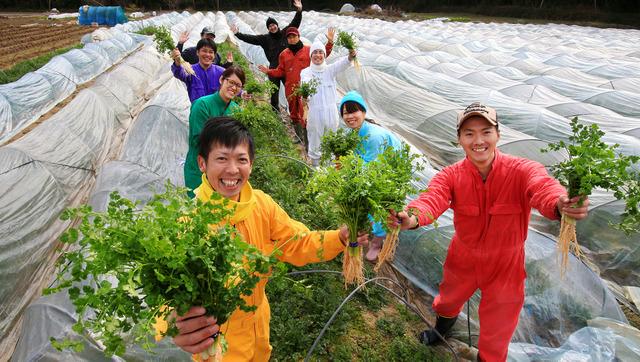 農業を盛り上げていこうと、生産者らで結成された「パクチーム」。お互いに収穫や出荷を手伝うこともある=岡山市