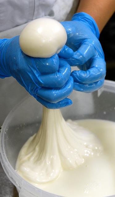 人気が高い六甲生まれのチーズ。モッツァレラチーズもその一つ。指の間からひねり出すようにして丸い形のチーズに仕上げられる=神戸市北区