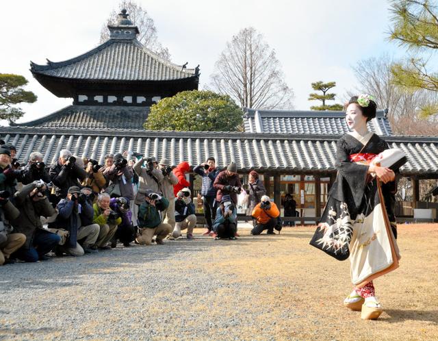 京都)舞妓さんあで姿、120人が撮影 東山で全日写連:朝日新聞デジタル
