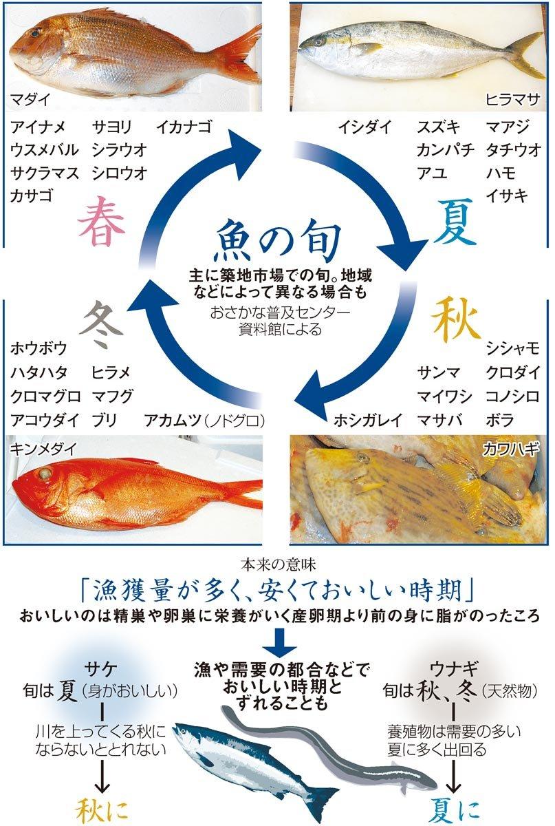 (今さら聞けない+)魚の旬 サケは夏の方がおいしい