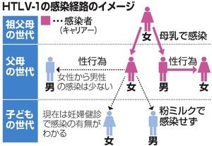 HTLV-1(5)情報編 性行為感染の対策 必要:朝日新聞デジタル