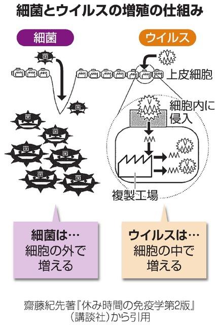 細菌とウイルスは違うって知っていますか?:朝日新聞デジタル