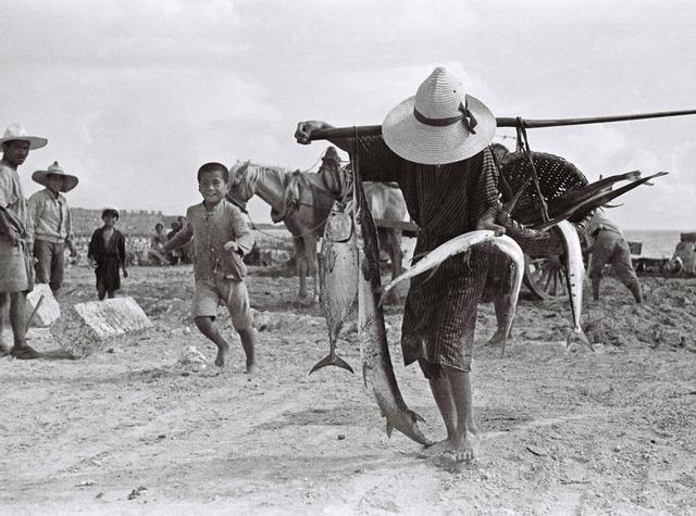 麦わら帽をかぶり、長いダツなどの魚を運ぶ漁師