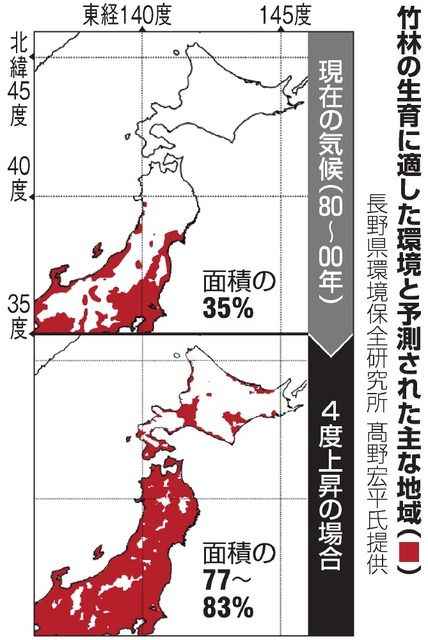 0f595209a8 このまま温暖化が進めば、主に本州だけだった竹の生育域が北上し、北海道の最北端・稚内まで達する可能性がある。東北大学や気象庁などの研究グループが公表し、18日  ...