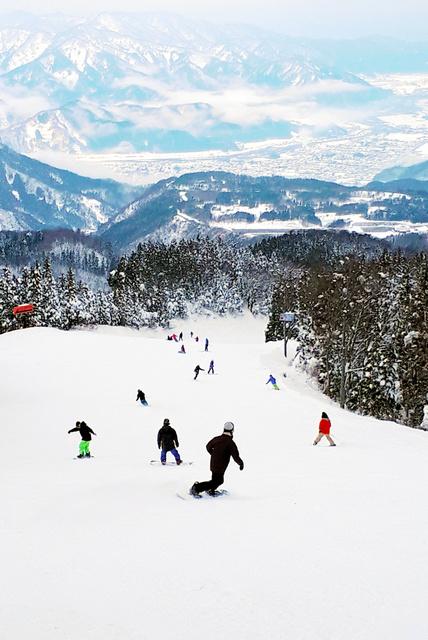 ジャム 勝山 天気 スキー ⚐ジャム 勝山