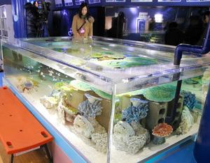 「竹島水族館」の画像検索結果