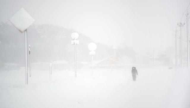 北陸・福井の大雪被害