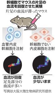 https://www.asahicom.jp/articles/images/AS20180208004138_commL.jpg