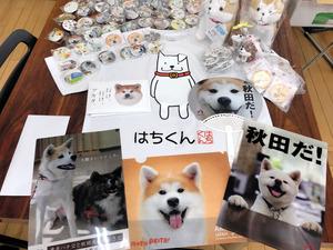 大館市と県がザギトワ選手に贈った秋田犬グッズ(同市提供)
