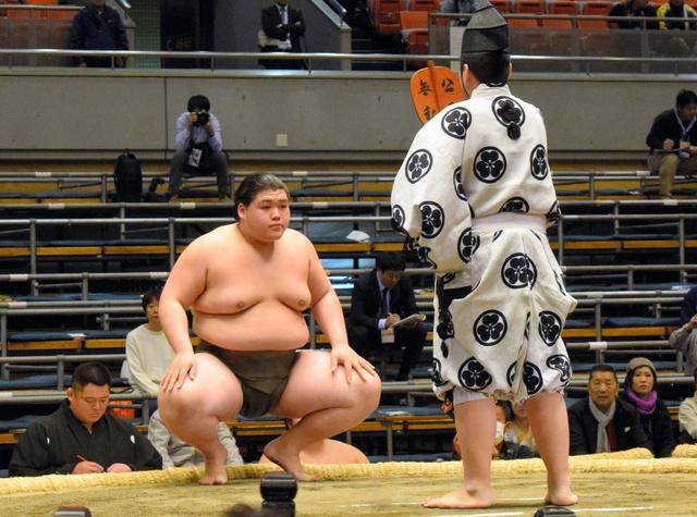 「大相撲納谷無料写真」の画像検索結果