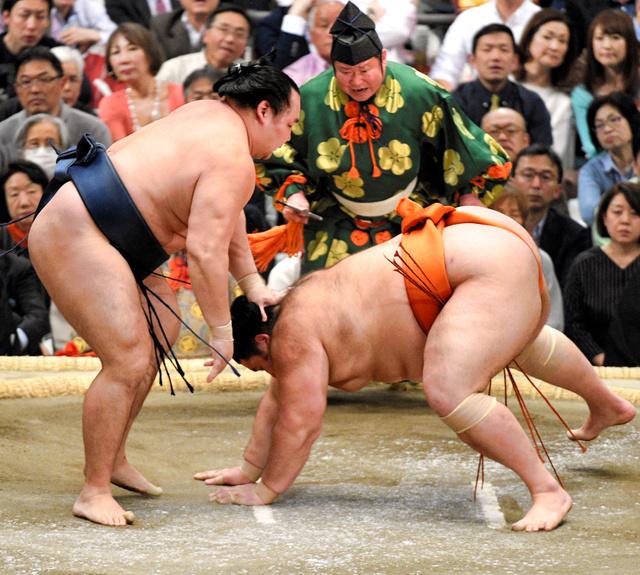 「大相撲魁聖無料写真」の画像検索結果