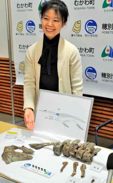 北海道)展示化石、国内3例目の...