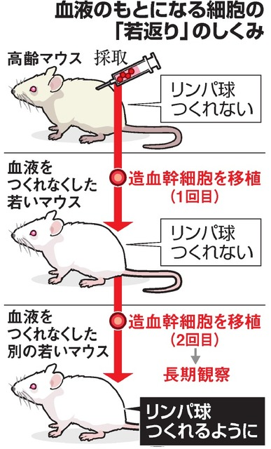 https://www.asahicom.jp/articles/images/AS20180413004216_comm.jpg