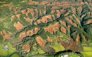 地震で周辺の山一帯が崩れ、山肌が露出していた=2018年9月6日午前7時44分、北海道厚真町、朝日新聞社機から、