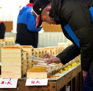世界中のウニが積み上げられたウニの低温卸売場。静寂の中、仲卸たちが目利きをしていた=樫山晃生撮影