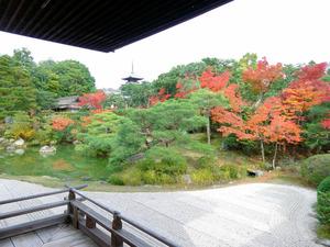 (京都旅レシピ)秋の古都、元号にちなむ見どころへ