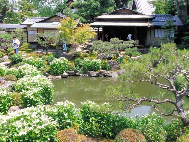 人気の京都検定、観光大使が予想したら