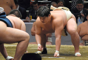 サークルの延長」でアマ相撲32強 早大引っ張る主将:朝日新聞デジタル