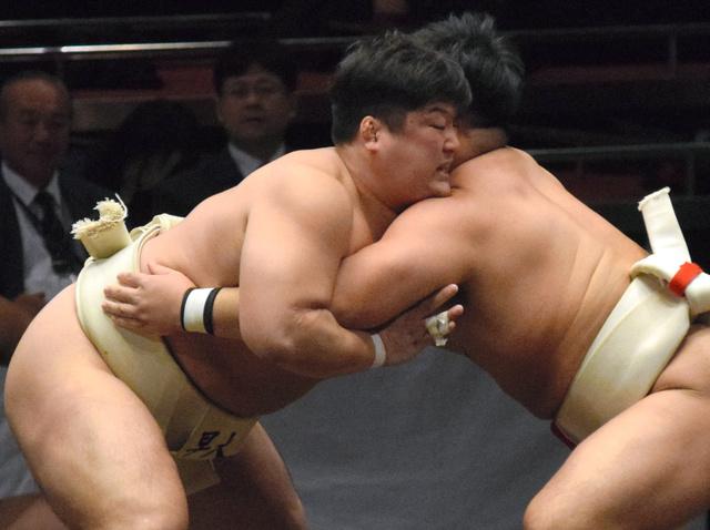 サークルの延長」でアマ相撲32強...