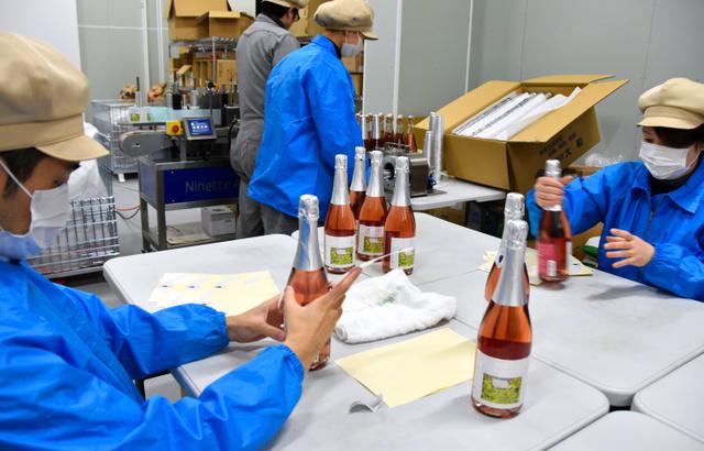福島)会津若松産ふどうのワイン...