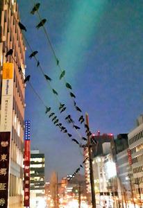https://www.asahicom.jp/articles/images/AS20190204003302_commL.jpg