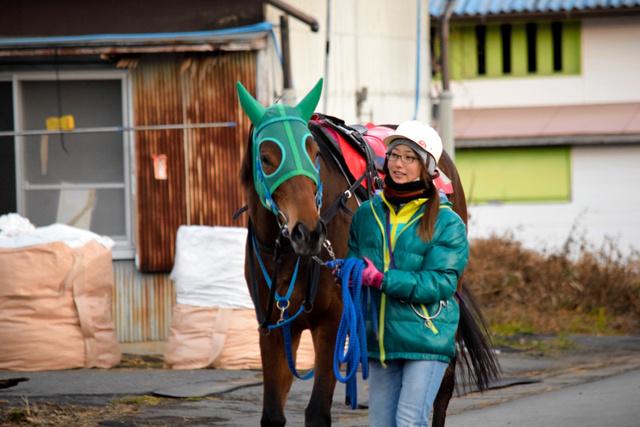 スマホで見つけた厩務員の仕事 24歳女性の新世界 - 一般スポーツ ...