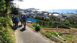 和歌山)熊野古道紀伊路 高台の遊歩道 紀伊水道を一望
