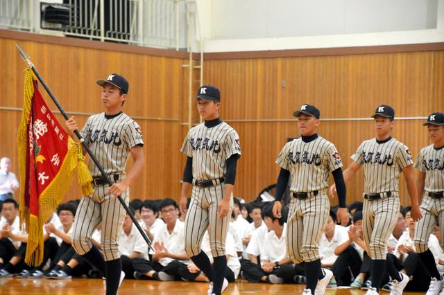 福井 県 高校 野球 2019