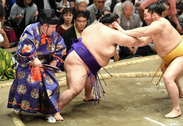 相撲 今日 の 取り組み