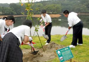 「長崎の丘」で植樹する中学生ら。奥は「広島の丘」=2019年9月21日午前10時47分、福岡県上毛町下唐原