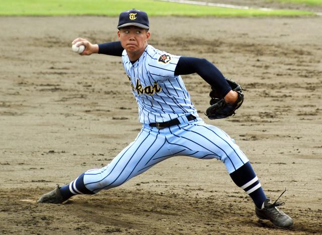 野球 山形 秋季 大会 県 高校