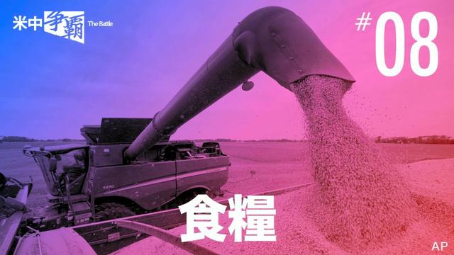 小麦備蓄量、世界の半分か 中国、米国の食糧禁輸を懸念