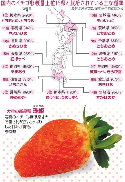 桃 生産量 都道府県 ランキング