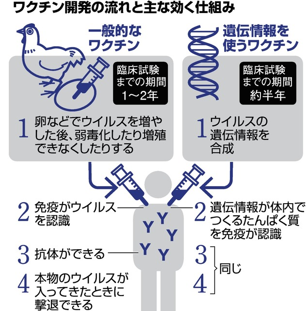 インフルエンザ ワクチン コロナ