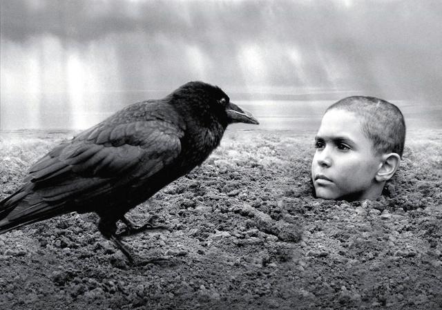 人間の残酷さ描き異例のヒット、「異端の鳥」監督に聞く