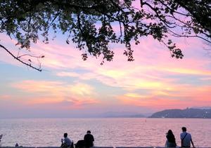 宍道湖から見える夕日(宍道湖サンセットカフェ提供)