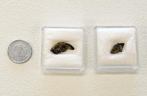 周防鋳銭司跡から出土した「承和昌宝」の鋳損じ銭。外縁にはみ出た部分が残っている