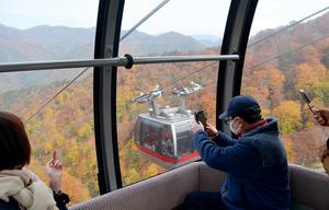 ロープウェーのゴンドラから景色を楽しむ観光客=2020年10月28日午後0時12分、群馬県みなかみ町湯桧曽、遠藤雄二撮影