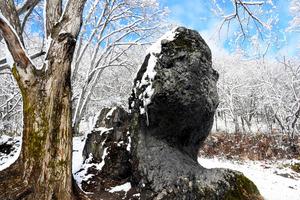 整備後の「魔神の頭」。周囲の流木が撤去され、すっきりとした姿をみせた=北海道旭川市