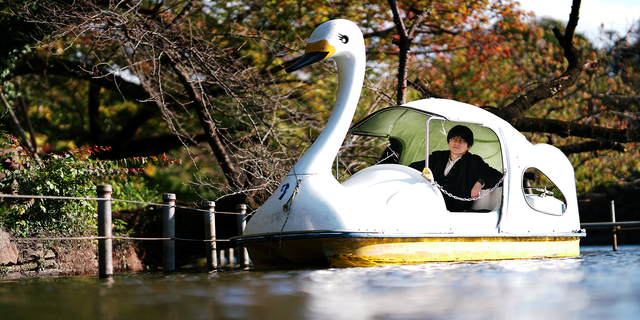 「かわいいんだけど怖い、というこの写真の不穏な気配は第4歌集の題『水中翼船炎上中』とも響き合う」。子どもの頃にあこがれた海から空まで飛べそうな夢の乗り物が燃える光景。「昭和」の輝きが反転しているさまを重ねた=東京・井の頭公園